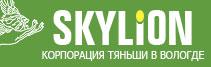 Дизайн веб сайта - Тяньши в Вологде