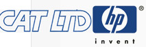 Оптимизация сайта - CatLTD